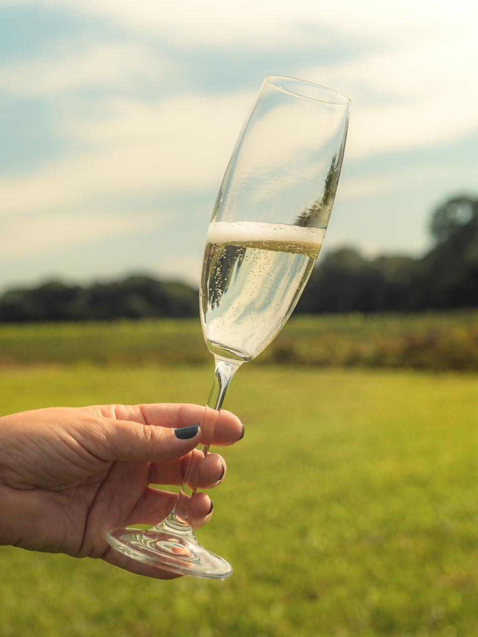 Dia do Vinho entrará no calendário comercial anual em Lisboa